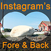 Logo Instagram's fore & backgrounds